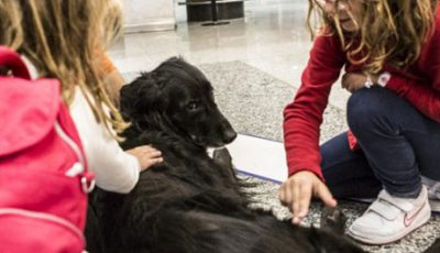 Pet therapy_aeroporti Milano_estate 2017