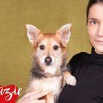 Human Dog 2017 _dati finali mostra castello sforzesco