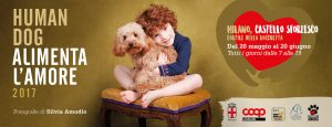 banner_mostra_alimentalamore_humandog17