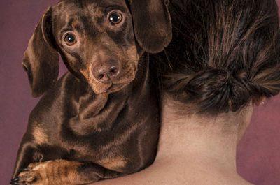 Convergenze Festival 2016 ospita Human Dog