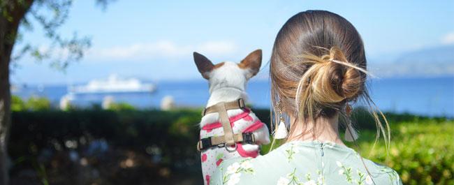 Vacanza con il tuo pet? Ecco qualche consiglio!