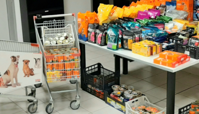 Pet Day 2019: 28mila i pasti generati nei nostri negozi