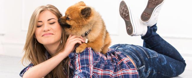Detrazioni spese veterinarie aumenta il tetto massimo