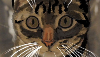 Giulietta il singolo Giordano Joe dedicato alla sua gatta