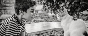 Bambini autistici e gatti più empatia e minori livelli di ansia
