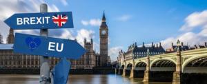 Brexit cosa cambia per i viaggi degli animali domestici