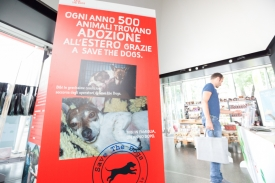 Save the Dogs and other Animals al Gate - 05 luglio 2016